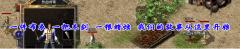 馨悦传奇1.70金币新区《龙飞凤舞